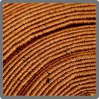 area rugs toronto